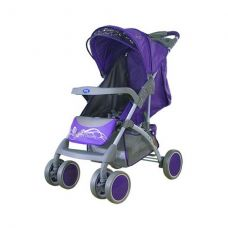 BAMBINI KING BUTTERFLY (C-22A)