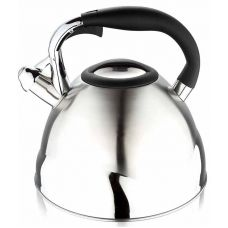 Чайник Wellberg Ergoria 4.3л со свистком