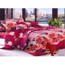 Комплект постельного белья B259-2
